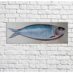 tableau sardine